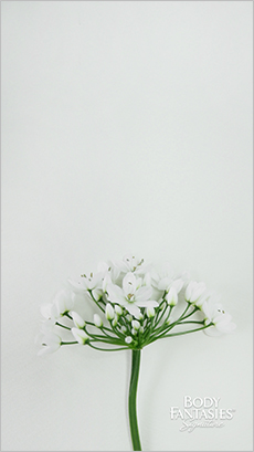 바디판타지모바일월페이퍼_05